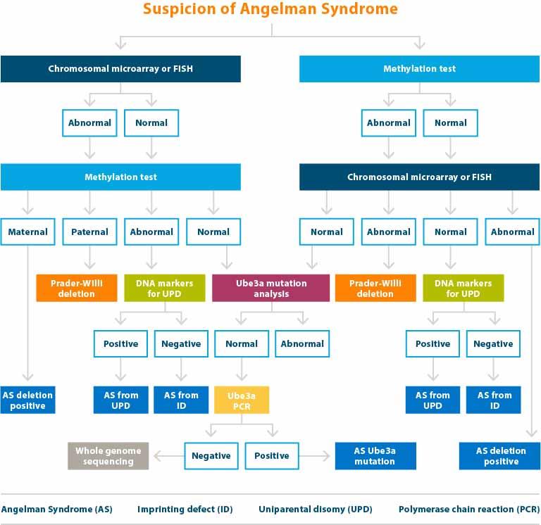 FAST Suspicion Chart 2
