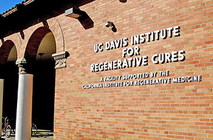 stem cells IRC signage700